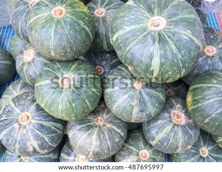 Green pumpkin stack on the market.