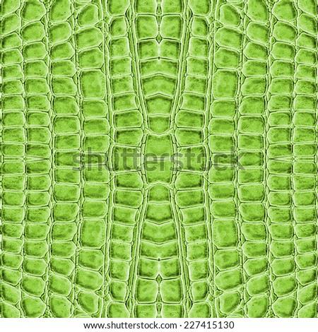 green reptile skin texture  - stock photo