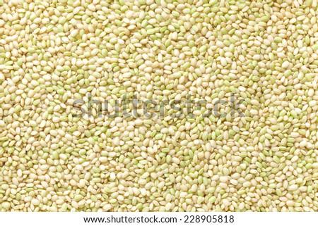 green rice - stock photo