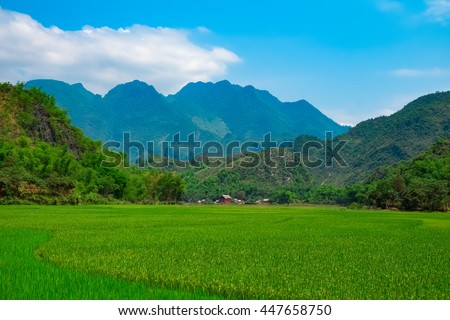 Green rice field and mountains, Mai Chau Valley, Vietnam, Southeast Asia - stock photo