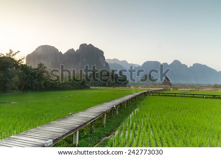 Green rice fields and mountains, Vang Vieng, Laos  - stock photo
