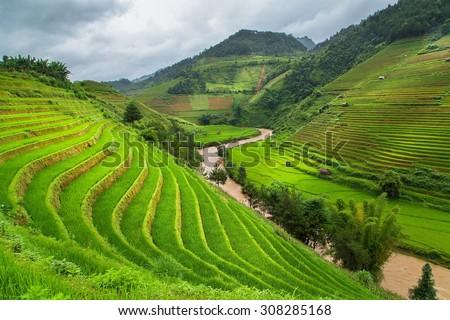 Green Rice fields on terraced in Mu cang chai, Vietnam - stock photo