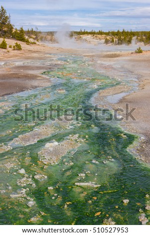 green river in the middle of the desert