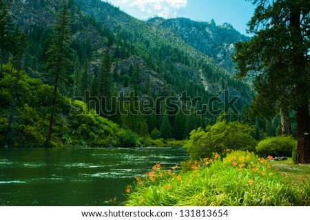 Green river running through mountains with lush evergreen forest and wildflowers - stock photo