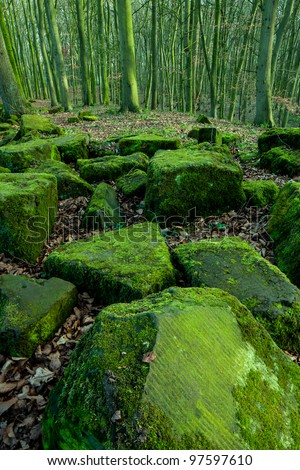 Green Rock Forest - stock photo
