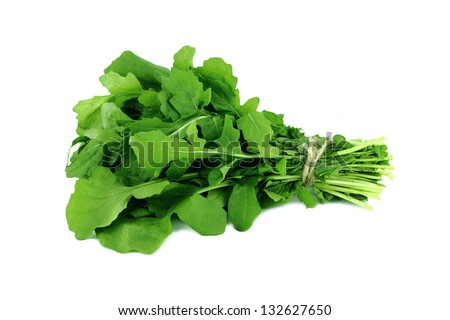 Green Rocket or Roquette leaves isolated on white background - stock photo