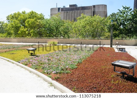 green roof on urban building - stock photo