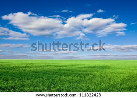 green rural fields - stock photo