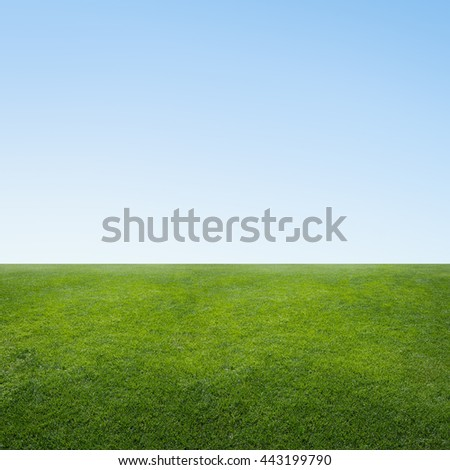 Green rural landscape, field grass and blue sky minimalism - stock photo