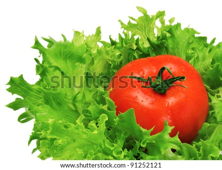 Green salad and tomato isolated on white background - stock photo