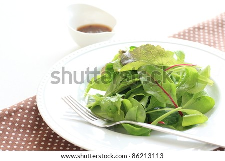 Green salad, baby leaf and dressing