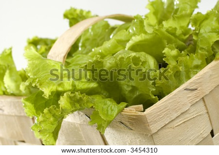 green salad leaves in basket close up - stock photo