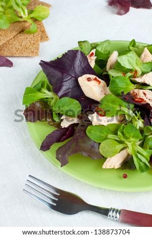 Green salad with smoked salmon - stock photo
