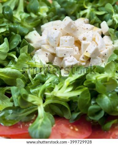 Green salad with tomato, mozzarella and corn salad - stock photo