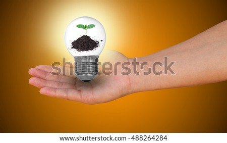 Green sapling inside lamp in men hand isolated on orange background