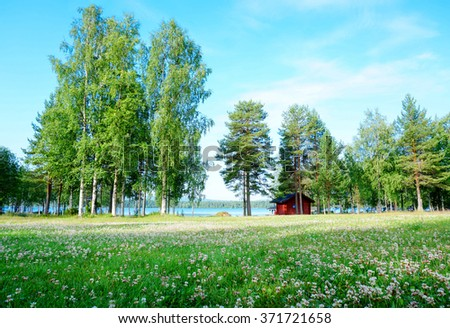 Green scenery of trees and meadow near the lake in summer, Finland - stock photo
