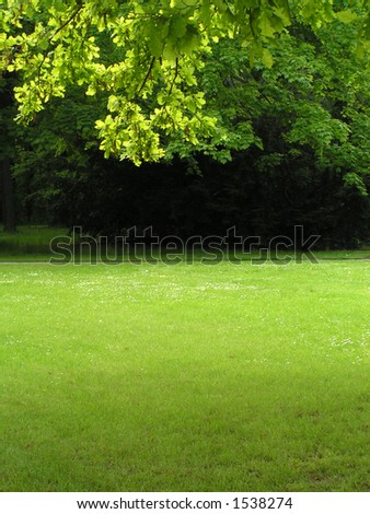 Green scenery, vertical
