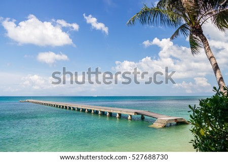 Green sea, pier and palm leaves on a tropical island