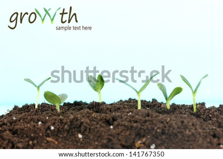 Green seedling growing from soil on bright background - stock photo