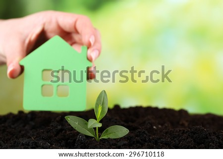 Green seedlings with small house in soil on bright background - stock photo