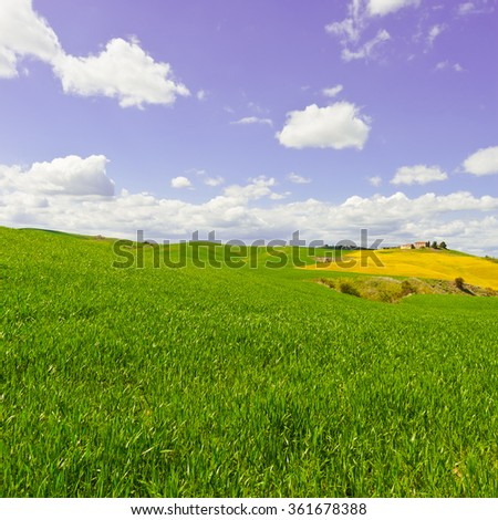 Green Sloping Meadows of Tuscany