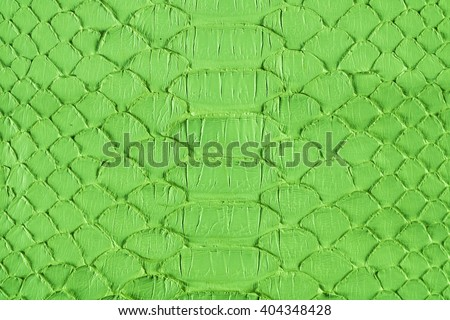 Green snake scales macro background