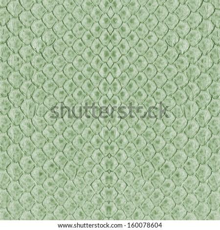 green snake skin as background - stock photo