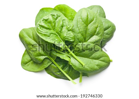 green spinach leaves on white background - stock photo