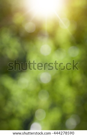 Green spring bokeh and sun.Green bokeh and sun beams in spring day. Natual blurred background. - stock photo