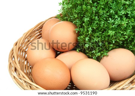 Green spring cress and chicken eggs in a basket. Isolated Easter symbol.