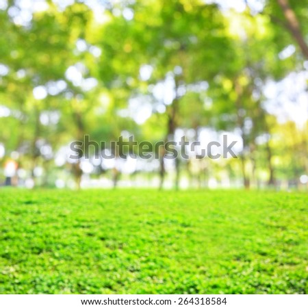 Green spring defocused abstract background 