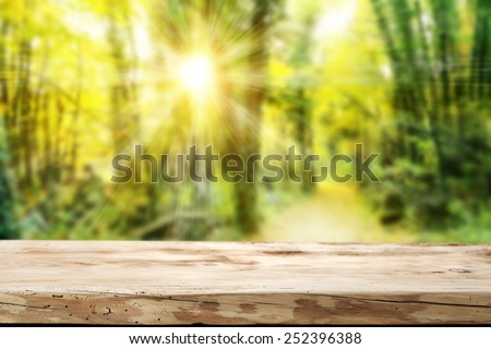 green spring forest background of sun light and your desk place  - stock photo