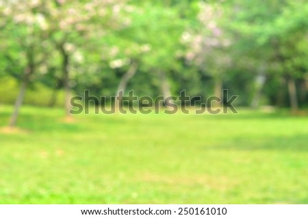 Green spring forest defocused abstract background  - stock photo