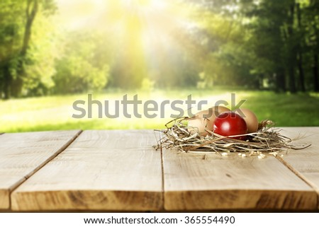 green spring garden and decoration of eggs and grass and yellow top place  - stock photo