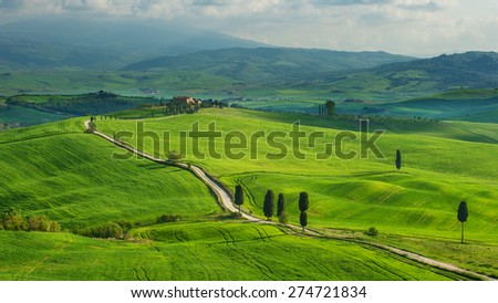 Green spring panoramic veaw on Tuscany Landscape - stock photo