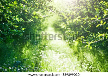 green spring time background - stock photo