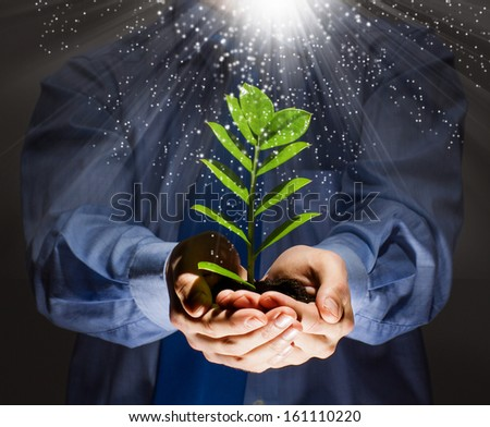 Green sprout in human hands. Recycle idea - stock photo