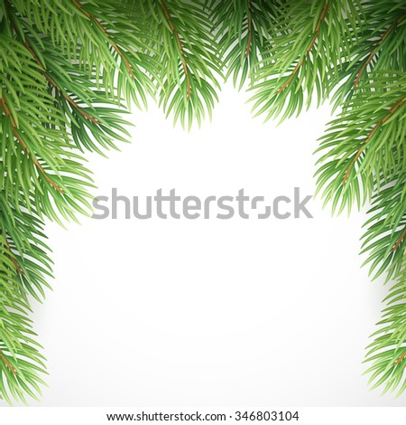 Green spruce branches like Christmas frame. illustration