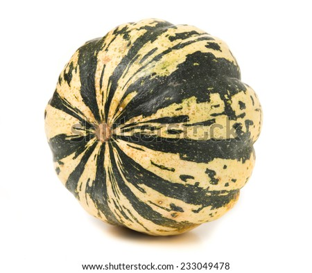 Green striped pumpkin isolated on white background - stock photo