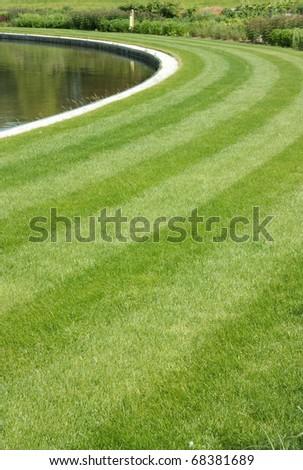 green stripes - stock photo