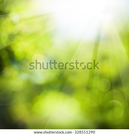 Green Summer Background with Foliage and Sunlight - stock photo