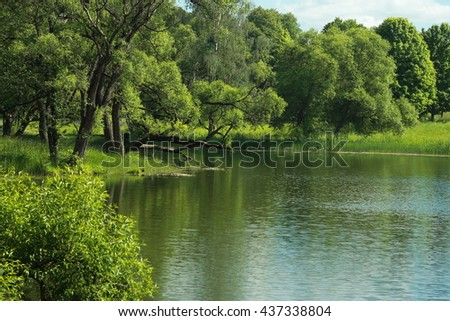 Green summer park with a river