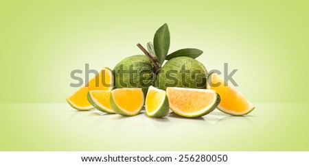 Green sweet oranges fruit  isolated on colored background - stock photo