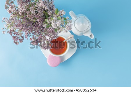 green tea in beautiful cup with oregano - stock photo
