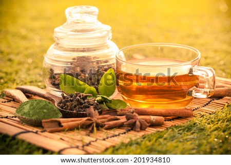 Green tea  in summer-Filtered Image - stock photo