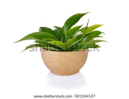 green tea leaf  on white background