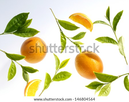 green tea leaves and orange - stock photo