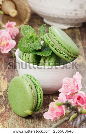 Green tea macarons. A teacup filled with matcha green tea macarons with cherry blossom over rustic background. Macro, selective focus - stock photo