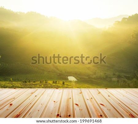Green tea plantation with wood floor. Fresh green tea plantations in morning and  - stock photo