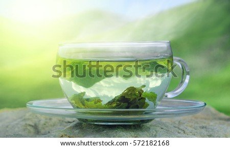 Green tea time. Green tea leaves at the bottom of the cup. Hot tea. Green tea on a background of mountains.